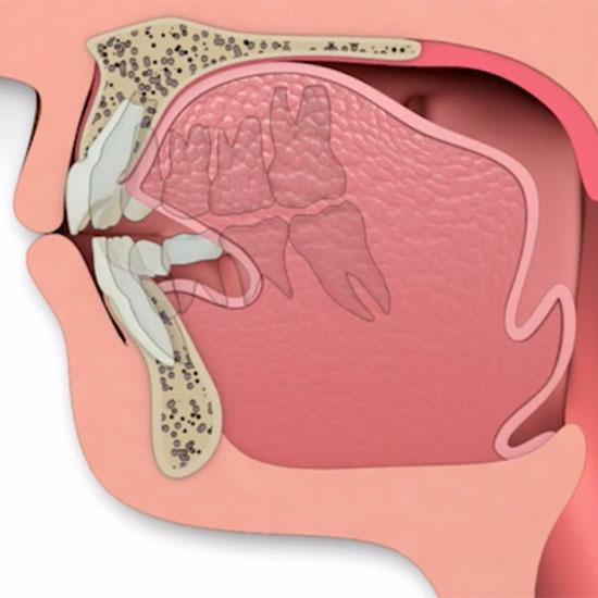 Mund-Rachen-Raum